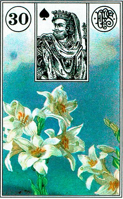 Las Flores - Lenormand Tarot