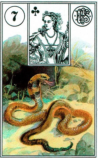 La Serpiente - Lenormand Tarot